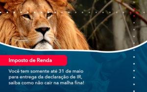 Voce Tem Somente Ate 31 De Maio Para Entrega Da Declaracao De Ir Saiba Como Nao Cair Na Malha Fina 1 - Resilcon - Contabilidade em São Paulo